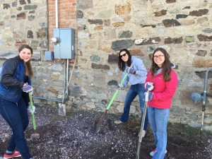 Elyse (far right) shovels rocks with Energy Corps and Justice for Montanans AmeriCorps members at Helena's Habitat for Humanity Restore